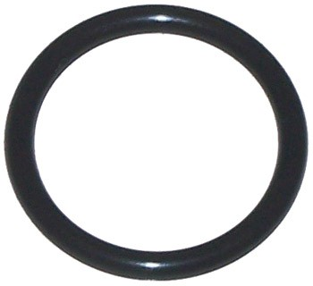 04-11 Rx8 Oil Level Sensor O-Ring (N3H1-10-T11)